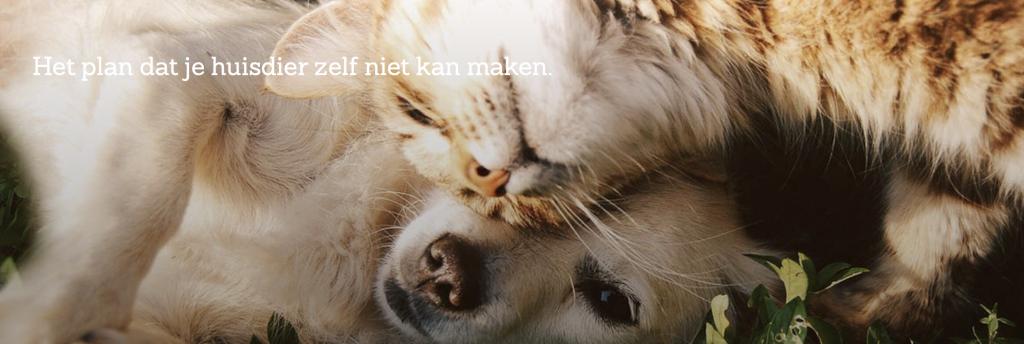 Huisdierenverzekering verzekeringskeuze.nl
